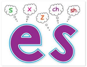 اضافة s و es